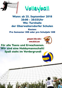 Volleyball2018